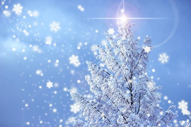 夢占い「雪」の夢の診断結果