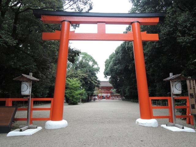 夢占い「神社の鳥居」の夢の診断結果