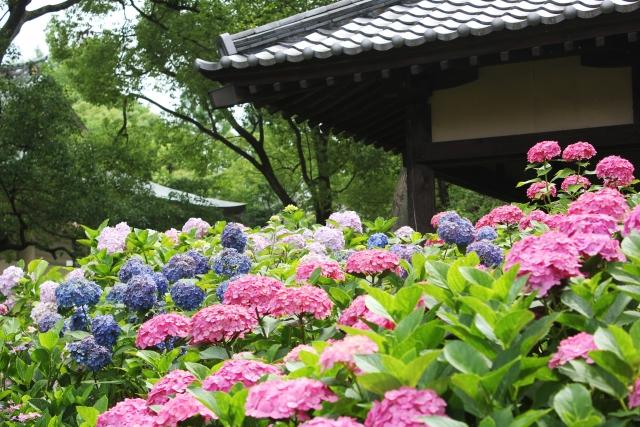夢占い「神社・仏閣」の夢の診断結果