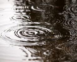 夢占い「雨の中を歩く」夢の診断結果