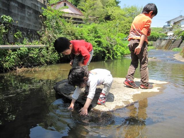 夢占い「川の魚」に関する夢の診断結果8選