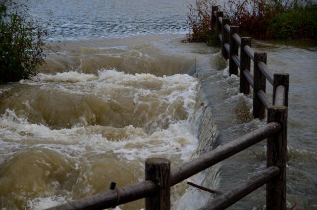 夢占い「洪水から逃げる」夢の診断結果8選