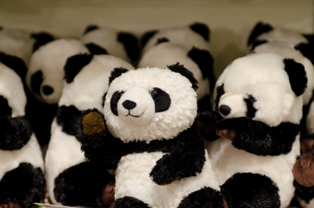 夢占い「動物園」に関する夢の診断結果