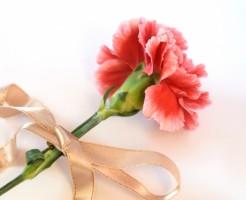 夢占い「花をもらう」夢の診断結果