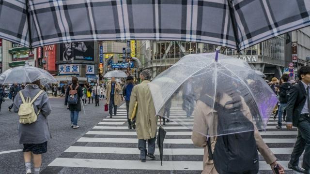 「雨」に関する夢占いの診断結果一覧