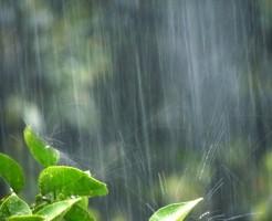 夢占い「濡れる」夢の診断結果