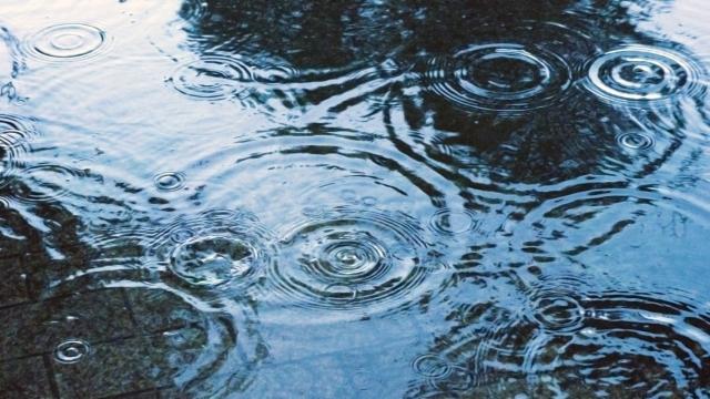 夢占い「水たまり」に関する夢の診断結果