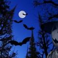 夢占い「コウモリ」に関する夢の診断結果