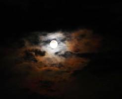 夢占い「変身」に関する夢の診断結果
