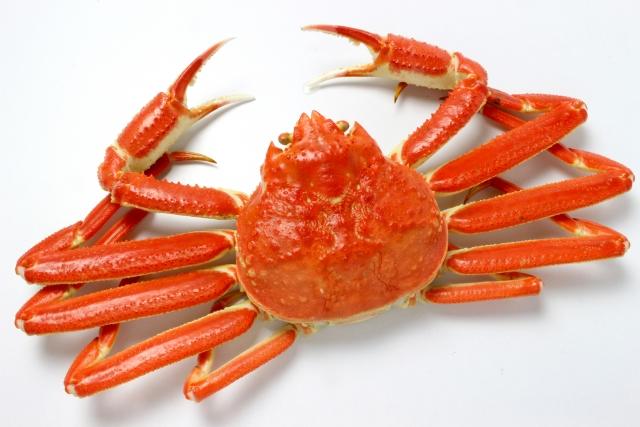 夢占い「蟹」に関する夢の診断結果