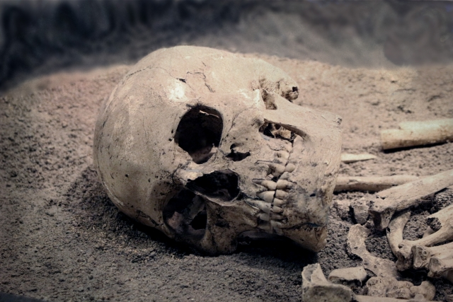 夢占い「骸骨」に関する夢の診断結果